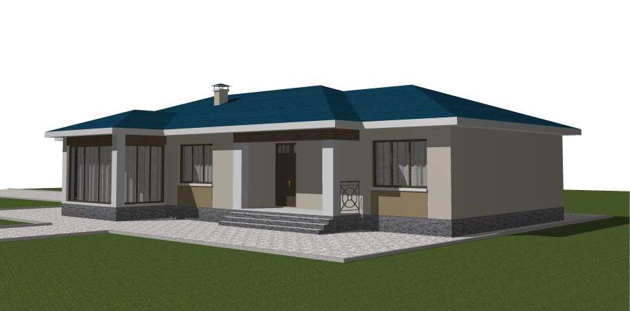 Проект большого одноэтажного дома на две семьи